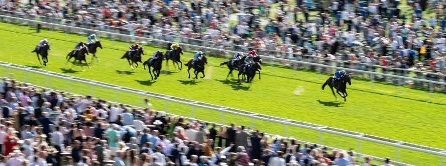 Nunthorpe stakes betting on sports guide to horse racing betting systems