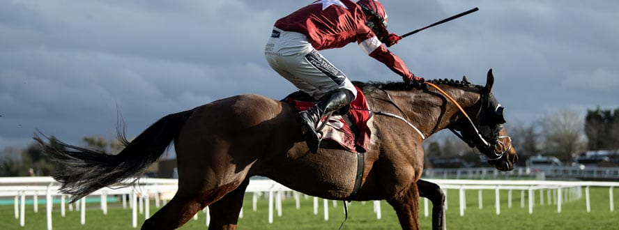 tiger roll grand national