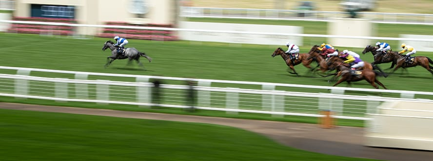 Queen mary stakes betting lines bettingexpert hot tips salon